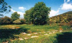 Αρχαίος Κλείτωρ2.jpg
