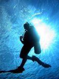 diving0.jpg